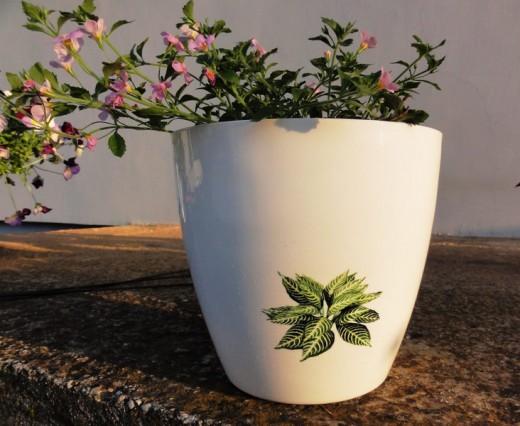 flowerpot3-520x426